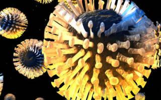 Может ли быть ротавирус без поноса, рвоты и температуры