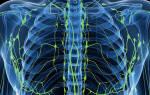 Какой врач лечит лимфоузлы — специалиcт по лимфоузлам