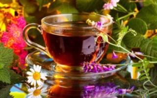 Какие травы пить при простуде взрослым