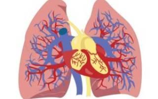 Астма сердца симптомы у взрослых