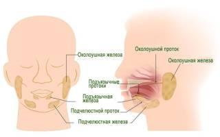Опухли слюнные железы
