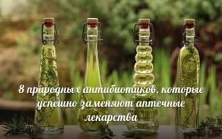 Мед природный антибиотик
