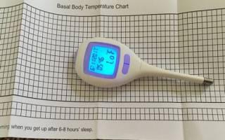 Таблица базальной температуры при беременности