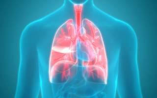Механизм развития отека легких ⋆ Лечение Сердца