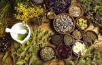 Травы от бронхита и кашля у взрослых