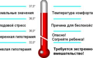 Нормальная температура человека: какая должна быть