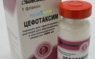 Цефотаксим уколы инструкция по применению взрослым дозировка