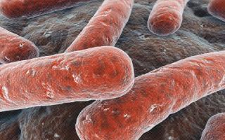 Как проявляется туберкулез легких на ранних стадиях