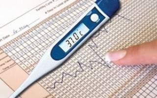 Как мерить температуру в попе